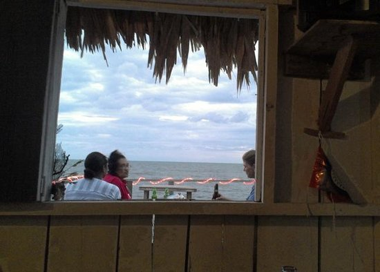 Asha's Culture Kitchen:                   Looking out onto the deck area from inside.