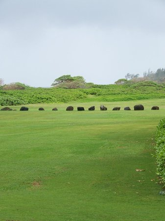 Kauai Beach Resort:                   Greenspace between resort and beach