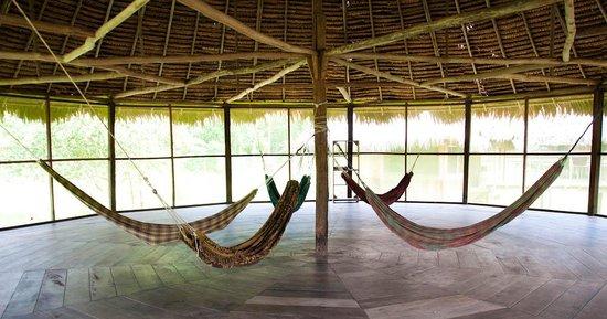 Chullachaqui  Eco Lodge: Hammocks area