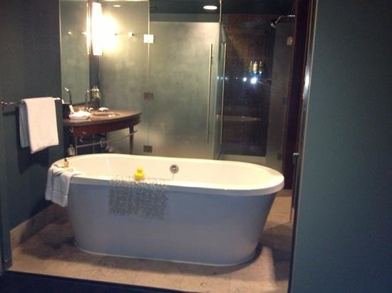 Loews Hotel 1000, Seattle:                   bath tub
