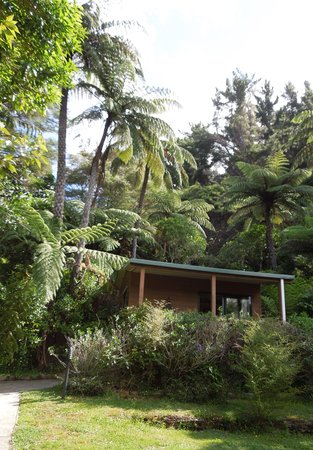 Mahana Lodge: The studio from outside