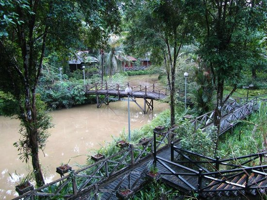 Sepilok Nature Resort: The view of the pond from our Villa