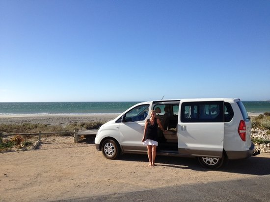 Camino Wine Tours: Our new Hyhundai H1 bus in the west coast