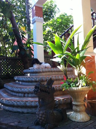 Santitham Guest House :                   Steps up to our room