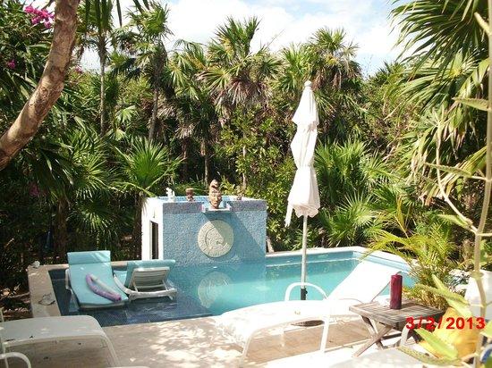 Casa Amor Del Sol:                   Pool area