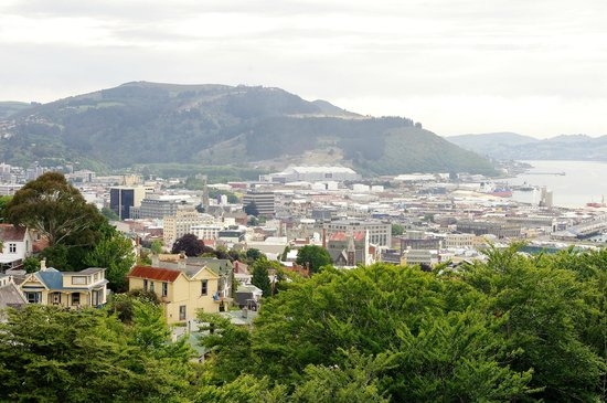 Signal Hill: View over Dunedin