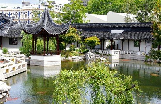 Dunedin Chinese Garden: Garden lake