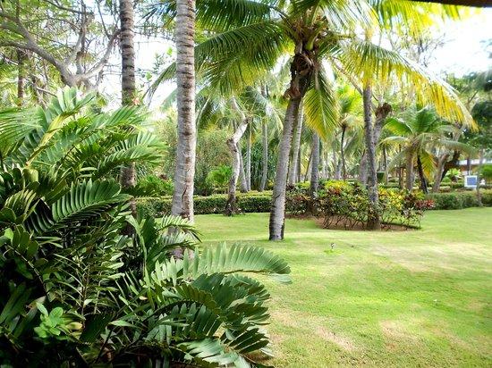 Iberostar Punta Cana:                                     PERCORSI INTERNI