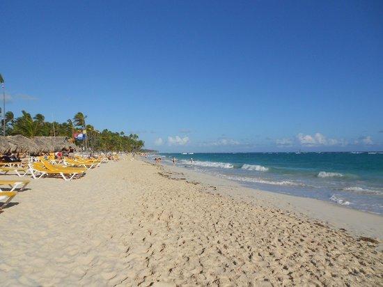Iberostar Punta Cana:                                     LA SPIAGGIA DEL RESORT