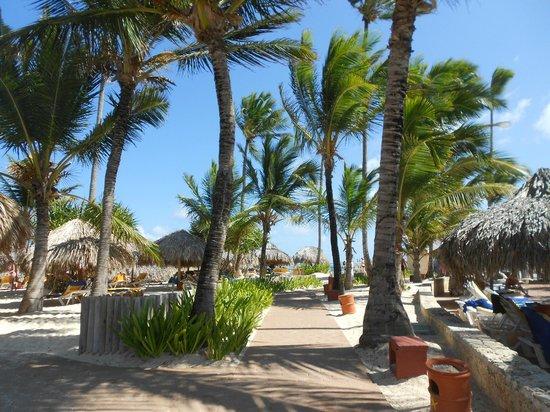 Iberostar Punta Cana:                                     VERSO LA SPIAGGIA
