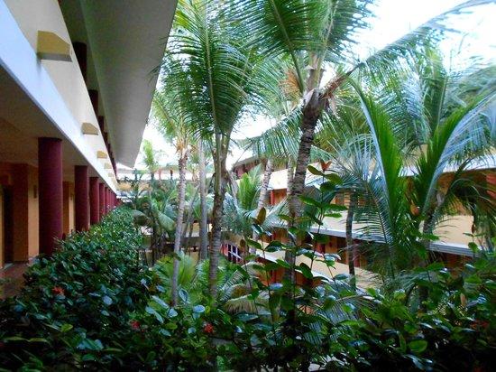 Iberostar Punta Cana:                                     VISTA DAI CORRIDOI DI ACCESSO CAMERE