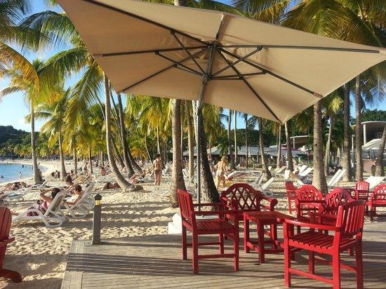 Club Med La Caravelle:                   le bar sur la plage
