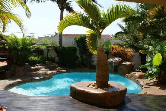 Africa Regent Guest House: Pool Area