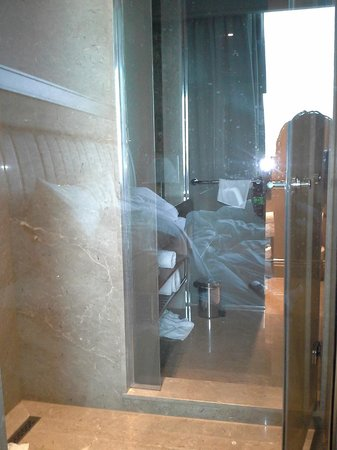 Renaissance Istanbul Polat Bosphorus Hotel:                   View into shower and bathroom from bedroom in first room.