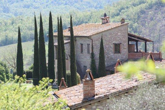San Venanzo, İtalya: HOSTERIA MATTTA