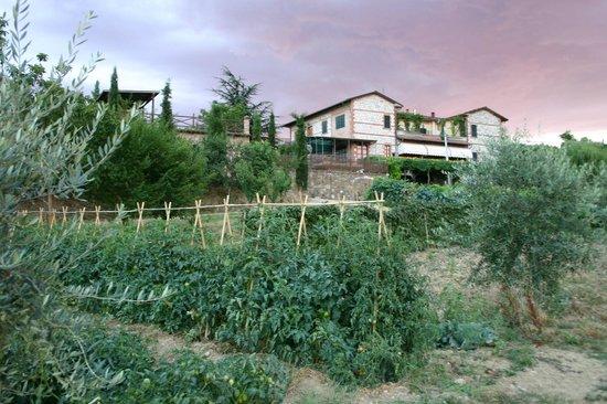Agriturismo La Pietriccia