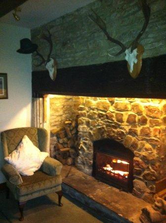 Brinsea Green Farm Bed & Breakfast :                   Front Room