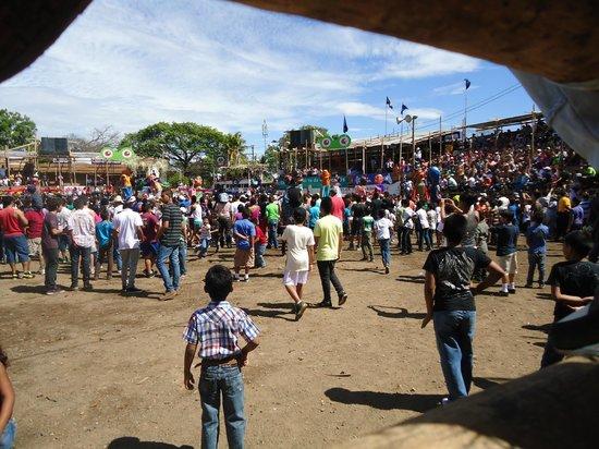 Seafari Costa Rica:                   Redondel