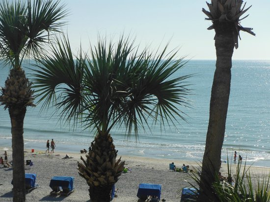 Doubletree Beach Resort by Hilton Tampa Bay / North Redington Beach:                   From our balcony.  Paradise in Florida.