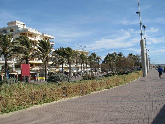 Hotel Palma Playa: ca. 100m Entfernung