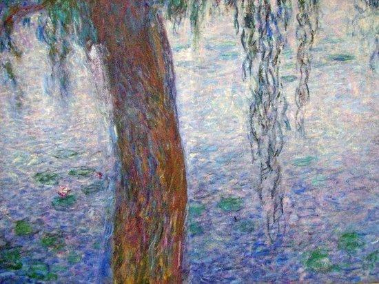 Musée de l'Orangerie :                   Ninfee di Monet