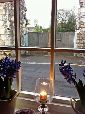 Minster Walk Accommodation:                   View at breakfast