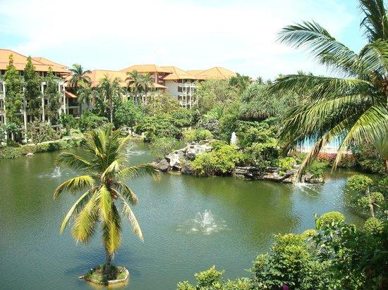 Ayodya Resort Bali:                   Вид из нашего  номера