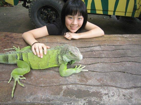 Taman Safari dan Bahari Bali:                                     Park