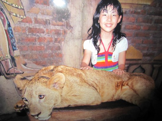 Gianyar, Indonesia:                                     With a Lion
