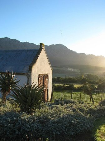 Swartberg Country Manor: View of the Swartberg Mountains