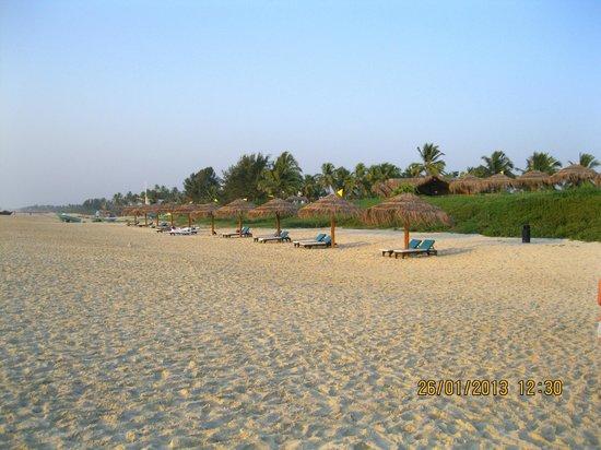 Taj Exotica Goa:                   Beach behind hotel.