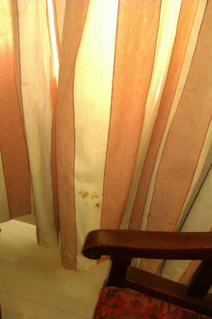 Arcadia Regency Hotel Alleppey:                   dirty curtains