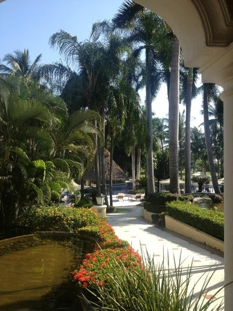 Casa Velas:                   Hotel grounds
