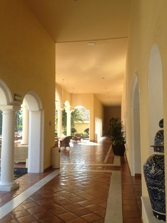 Casa Velas:                   Back terrace area
