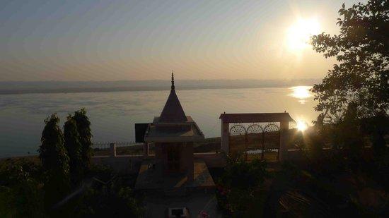 The Yoga Mandir:                                     yoga at dawn in the mandir
