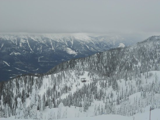 Lizard Creek Lodge: View from the top of Fernie Alpine Resort