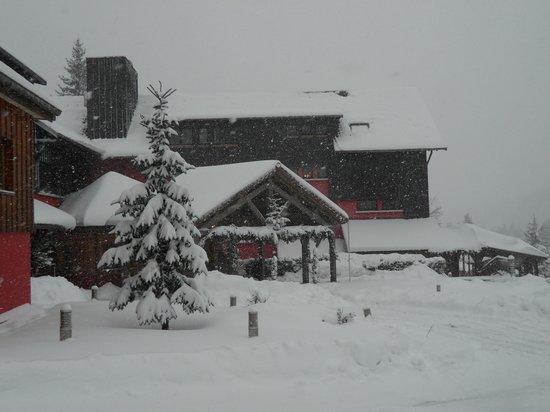 Les Jardins de Sophie:                   L'entrée de l'hôtel en hiver