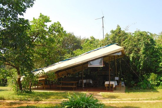 The Machan:                   Dining Shack
