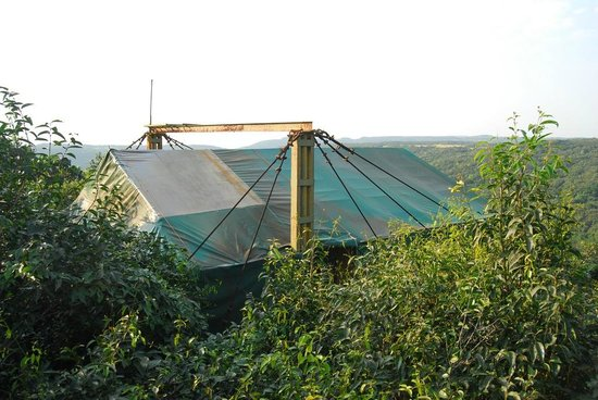 The Machan:                   The Canopy Tent