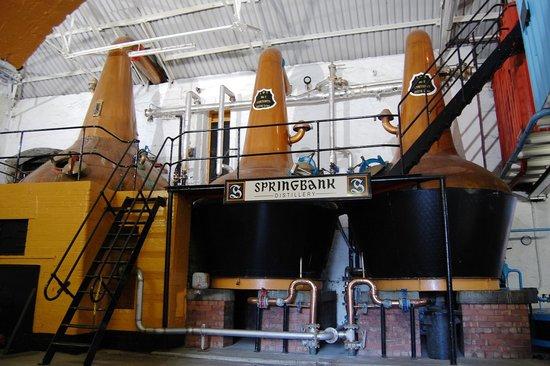 Springbank Distillery 사진