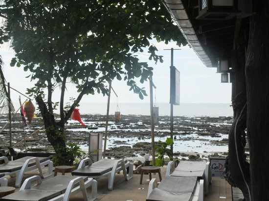Lanta New Coconut Bungalow :                   strand..