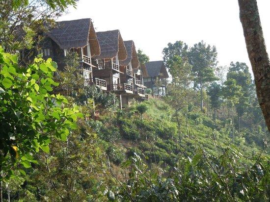 98 Acres Resort:                   individual cabins