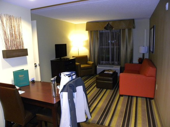 Homewood Suites Rochester/Greece:                   Living room area