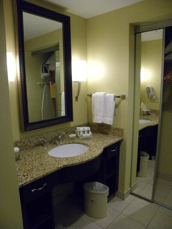 Homewood Suites Rochester/Greece:                   Vanity area, storage only on the bottom