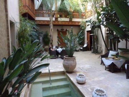 Riad Flam :                                     The indoor garden