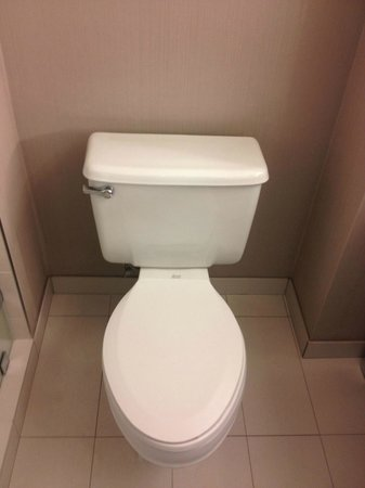 Manchester Grand Hyatt San Diego: WC