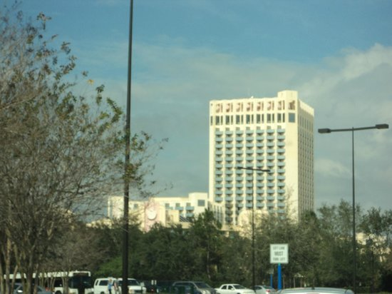 Buena Vista Palace:                   Tallest hotel in the area