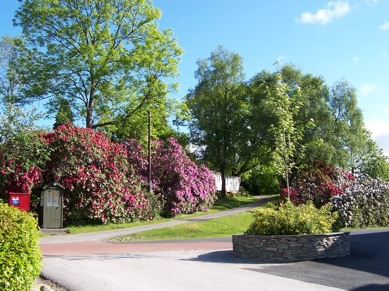 Skelwith Fold Caravan Park:                   Every season is colourful