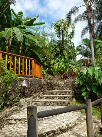 Blancaneaux Lodge:                   Path to restaurant