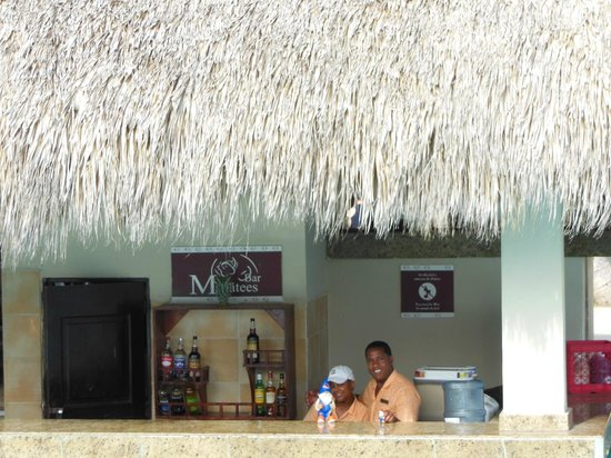 Dreams Palm Beach Punta Cana:                   Having a drink at the swim up bar